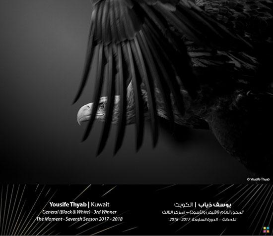 35080-صور-جائزة-دبي-للتصوير-الضوئى-(17)