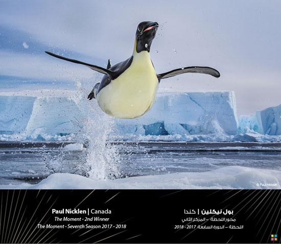 58155-صور-جائزة-دبي-للتصوير-الضوئى-(3)