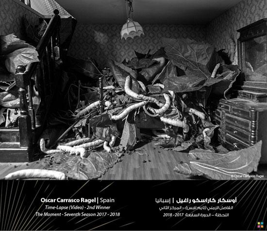 74276-صور-جائزة-دبي-للتصوير-الضوئى-(8)