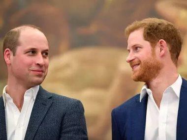 الأميران هارى و ويليام