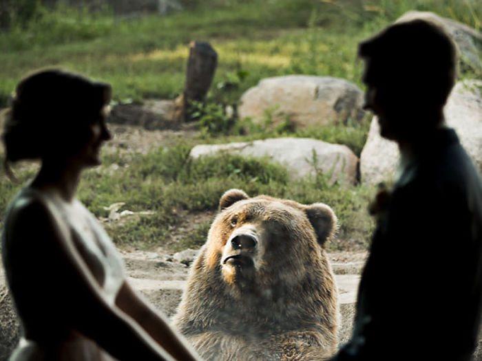 فرح فى حديقة الحيوان