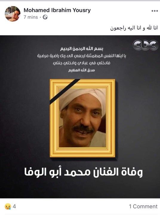 محمد أبو الوفا (6)