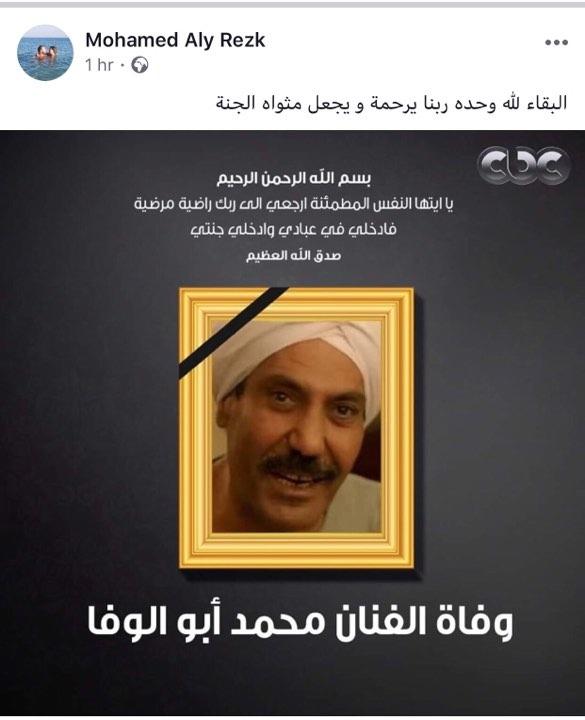 محمد أبو الوفا (2)