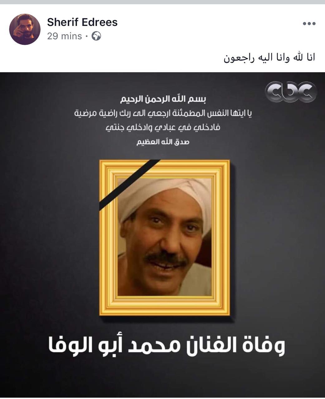 محمد أبو الوفا (7)