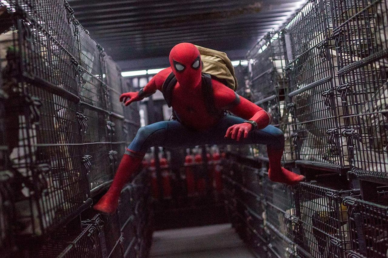 فيلم Spider man (6)
