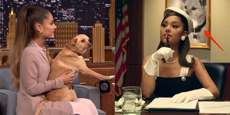 جراند و كلبتها