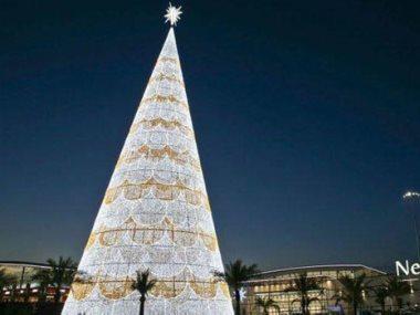 اكبر شجرة لعيد الميلاد فى اوروبا تكون فى اسبانيا
