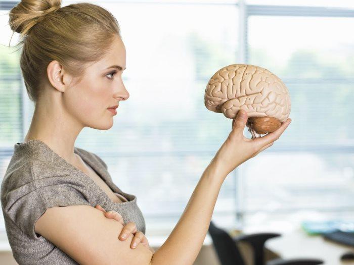 العقل البشرى