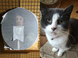 صدق أو لا تصدق.. قطة تتلف لوحة نادرة من القرن السابع عشر